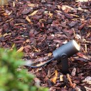 Philips Hue Outdoor-lampen voor een sfeervolle tuin