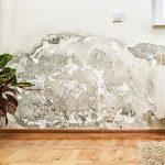Comment traiter l'humidité de votre logement ?
