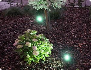 Un jardin plein d'ambiance avec les lampes Philips Hue Outdoor